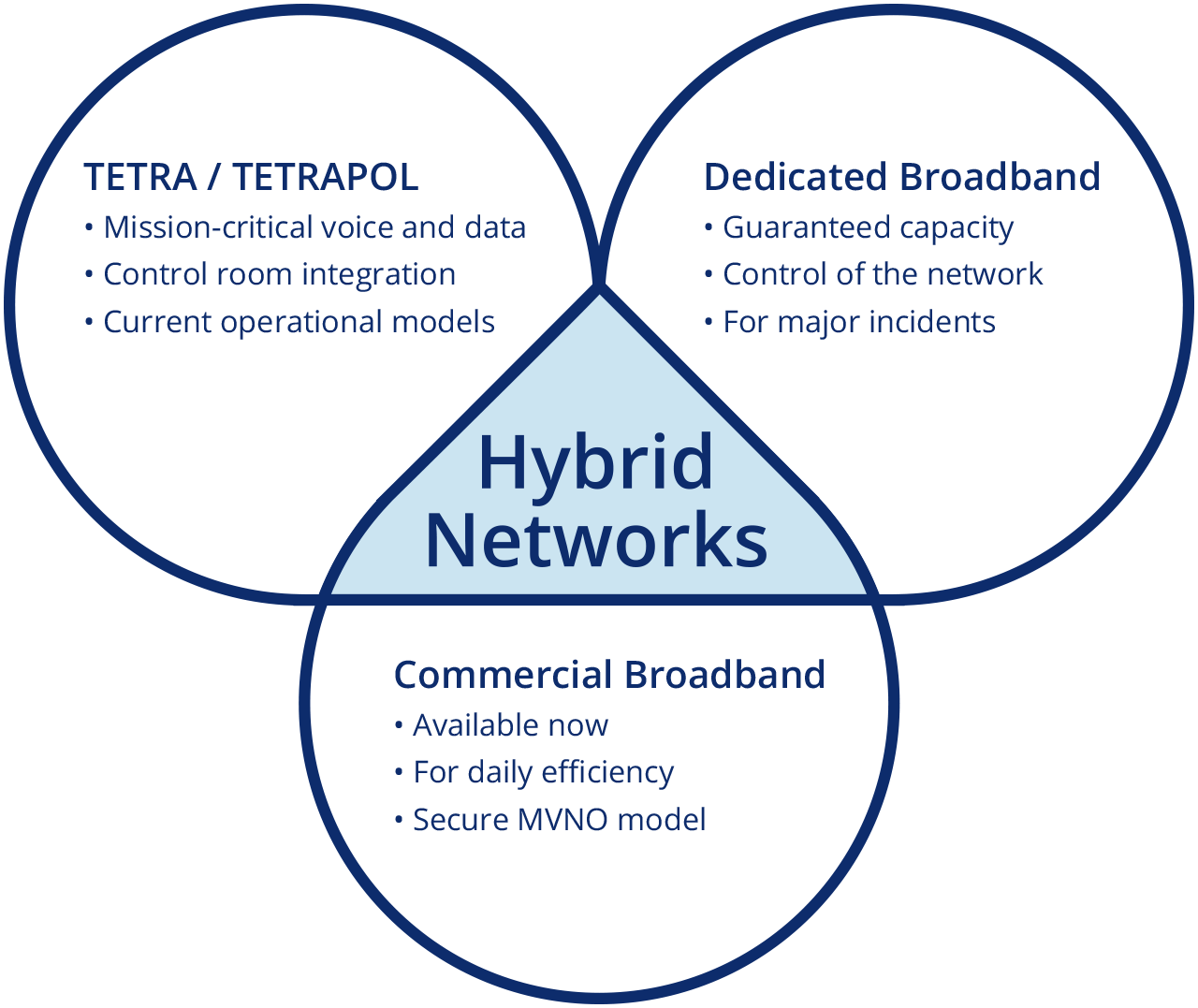 Hybrid network approach graphic